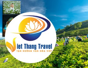 TOUR ĐÀ LẠT - MEETING TOUR 3N3Đ